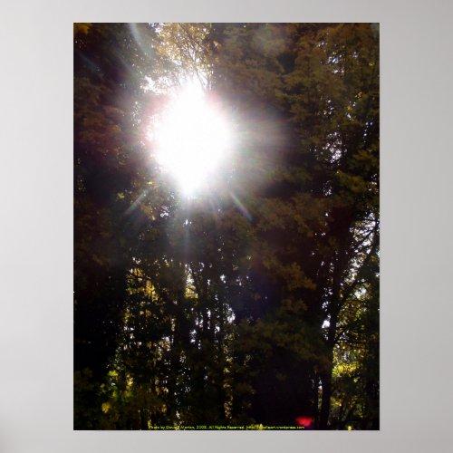 Autumn Sun Rays #1 print