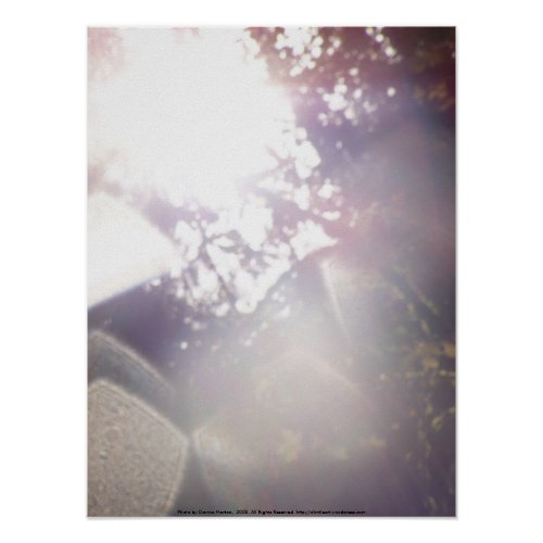 Autumn Sun Rays #21 - Customized print