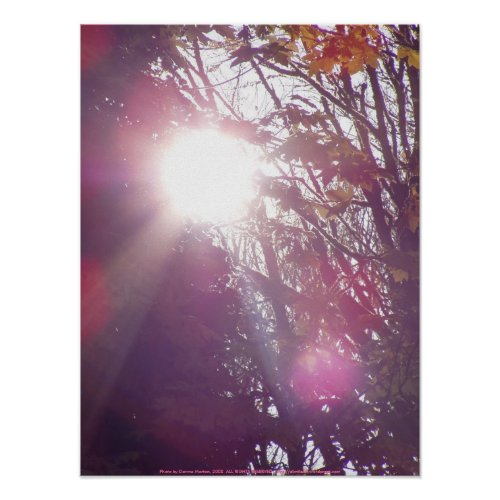 Autumn sun Rays #60 print