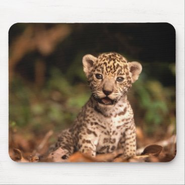 Baby Leopard Mousepad
