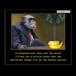Banana Tycoons