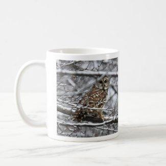 Barred Owl Coffee Mugs