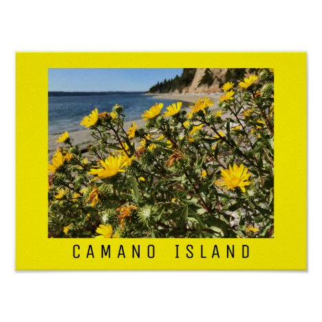 Beach Camano Island Washington Photograph
