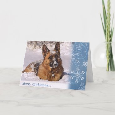 Beautiful  German Shepherd Dog in snow Holiday Card