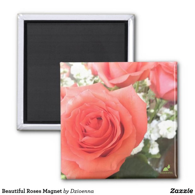 Beautiful Roses Magnet