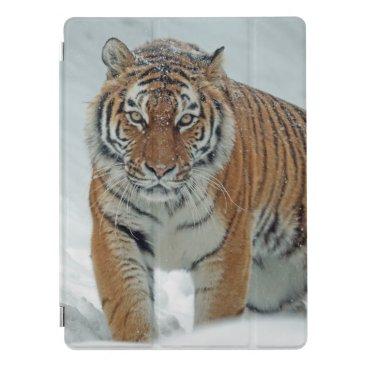 Beautiful Tiger in Snow iPad Pro Cover