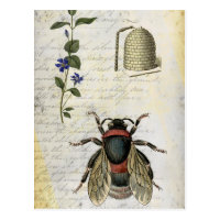Bee Flower Hive Postcard