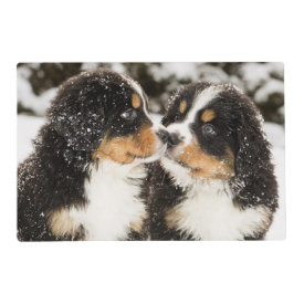 Bernese Mountain Dog Puppets Sniff Each Other Laminated Place Mat