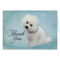 Bichon Thank You Card