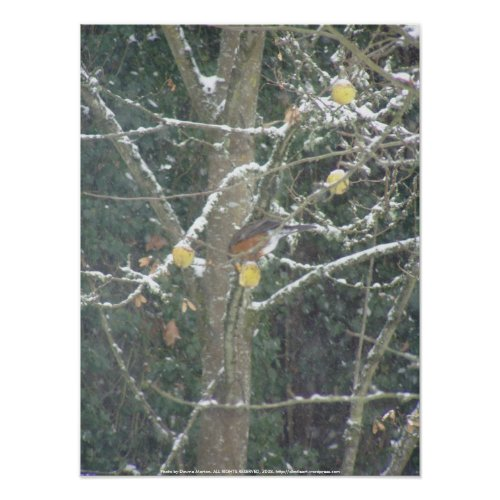 Bird in a winter tree #2 print