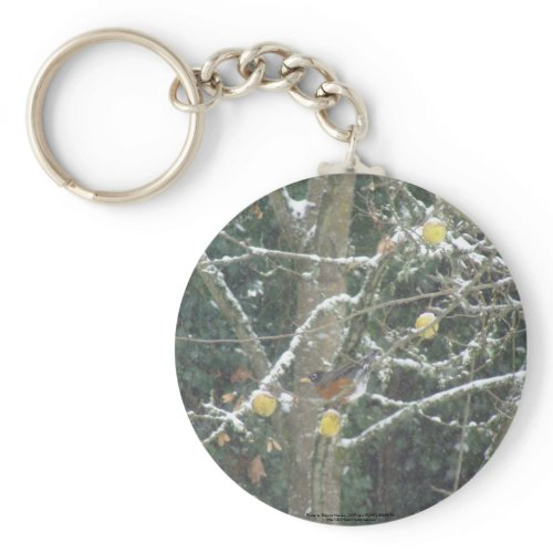 bird in a winter tree keychain