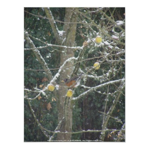 bird in a winter tree print