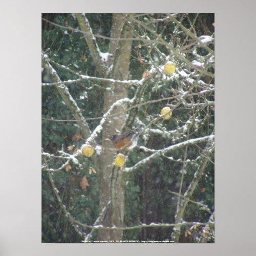 bird in a winter tree print