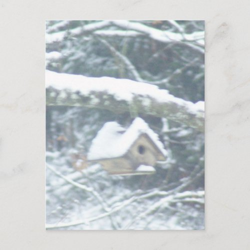 birdhouse in the snow postcard