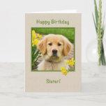 Sweet Golden Retriever & Daffodils Birthday Card (Also available in niece, grandma, grandpa & more)