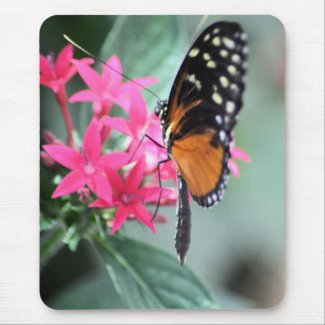 Black and Orange Butterfly Mousepad mousepad