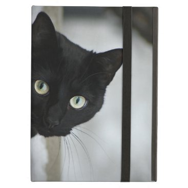 Black Cat iPad Air Case