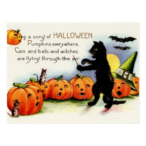 Black Cat postcard, Singing Pumpkins, Halloween Postcard