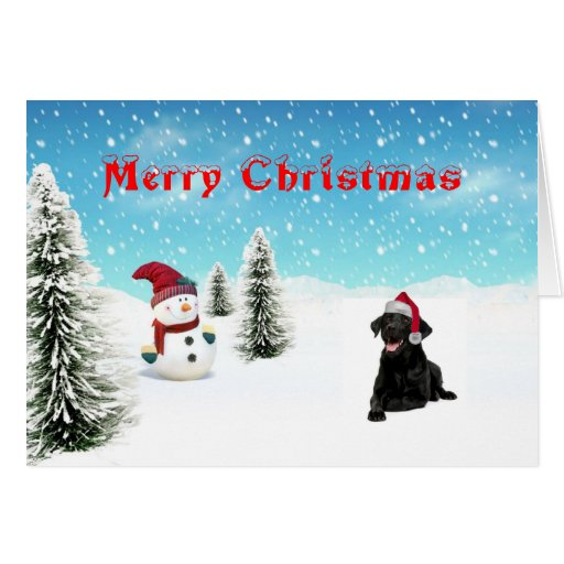 Black Lab Christmas Card Zazzle