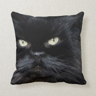 Black Pillow - Black Cat