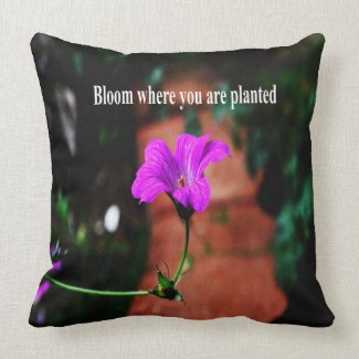 Bloom where you are planted throw pillows