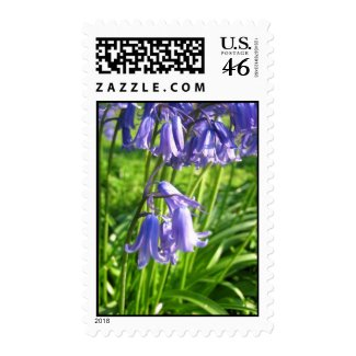 Blue bell flowers zazzle_stamp