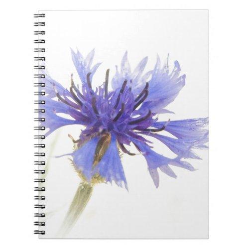 Blue Cornflower Photo - Notebook