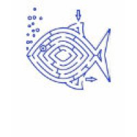 Maze Puzzle Geeks T-Shirts & Gifts - Blue Fish
