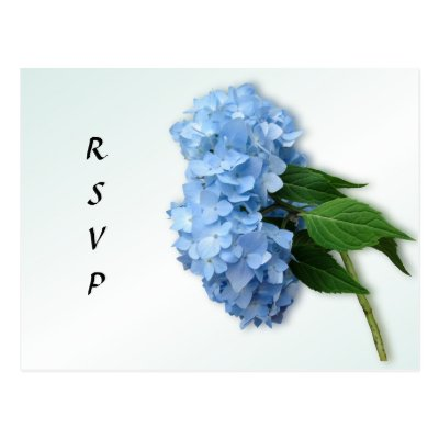 Blue Heaven Hydrangea Wedding Reply Postcard