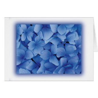 Blue Hydrangea Blossoms Greeting Card