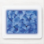 Blue Hydrangea Blossoms mousepads
