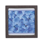 Blue Hydrangea Blossoms premium gift boxes