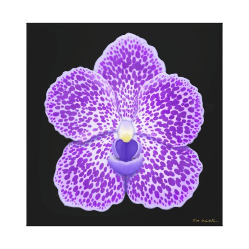 Blue Vanda Orchid Flower Wrapped Canvas wrappedcanvas