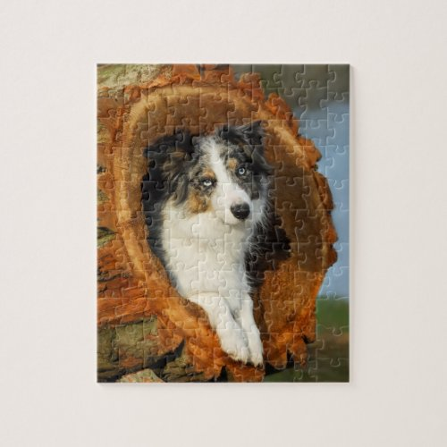 Border Collie cute dog Jigsaw Puzzle