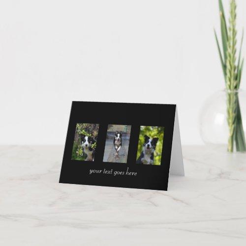 Border Collie dog blank custom text note card
