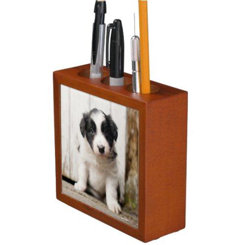 Border Collie Puppy Desk Organizer