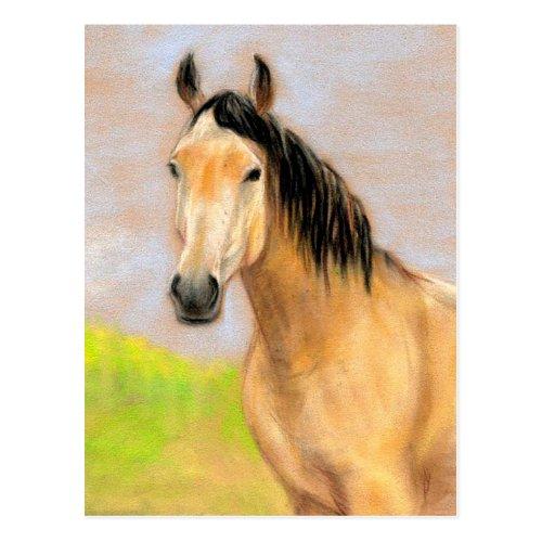 Bucksin Horse Original Art Postcard