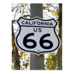 California 66 Postcard