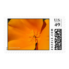California Poppy Stamps