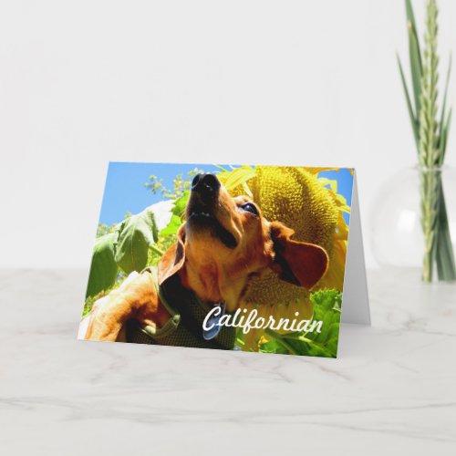 Californian Dog Greeting Card