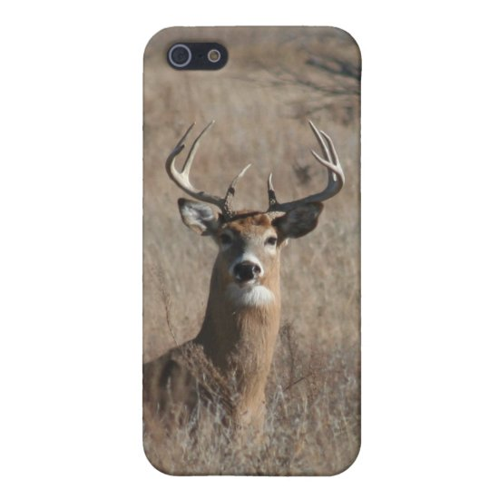 Camo Buck Whitetail Deer iPhone 5/5S Case