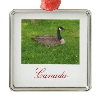 Canada Goose Ornament ornament