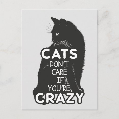 Cats Don't Care if You're Crazy Postcard