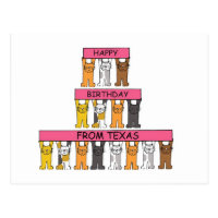 Cats Happy Birthday from Texas Postcard