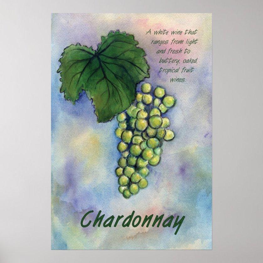 Chardonnay White Wine Grapes Art Print