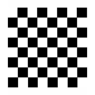 Checker Pattern shirt