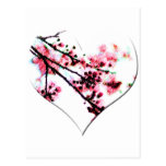 Cherry Blossom Heart postcards