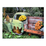Chickens & Vintage Pickup Truck With Flowers Postcard