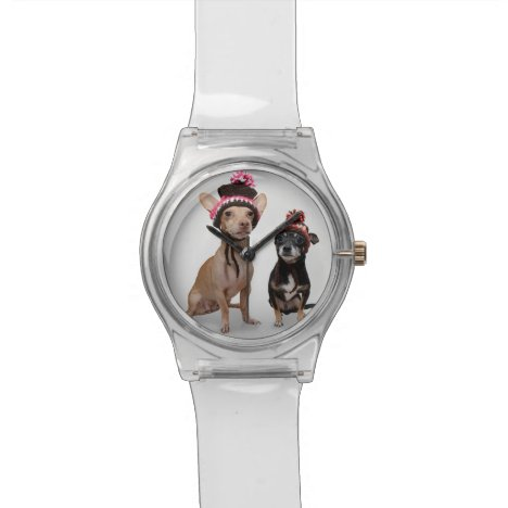 Chihuahua Dogs With Hats Photo Wristwatch