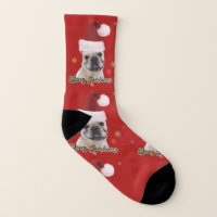 Christmas French Bulldog dog socks